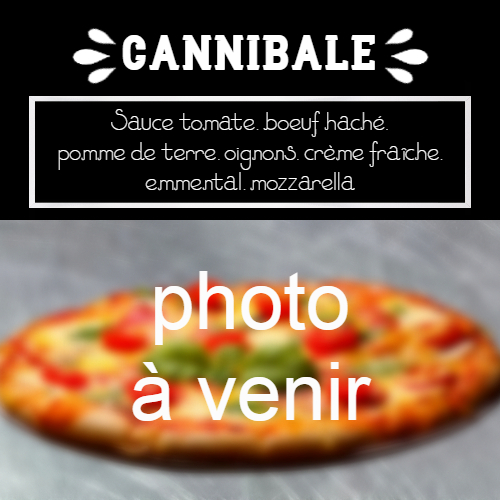 moulin-a-pizza-bain-de-bretagne-cannibale