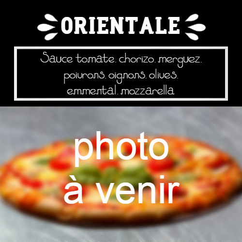 moulin-a-pizza-bain-de-bretagne-orientale