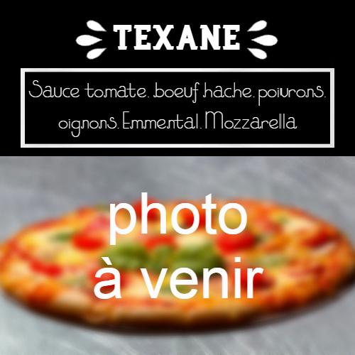 moulin-a-pizza-bain-de-bretagne-texane